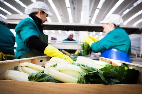 """""""We think agriculture plays an essential role in ensuring the quality of the food we eat as well as a better future for both the environment and humanity."""""""